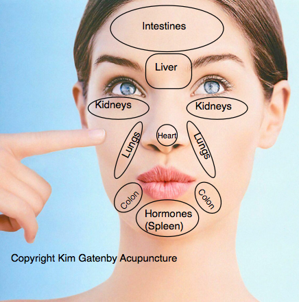 Tcm Facial Diagnosis 67